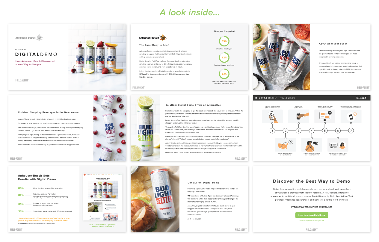 Anheuser-Busch Digital Demo Case Study Pages Preview