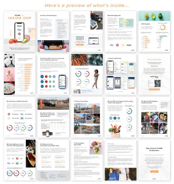 Inside OGP Report Pages Preview