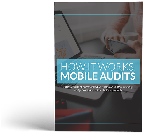 MobileAudits-How-It-Works-500.png